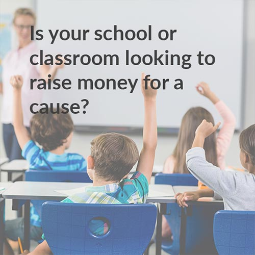Raise money with your school to support the youth mental health project